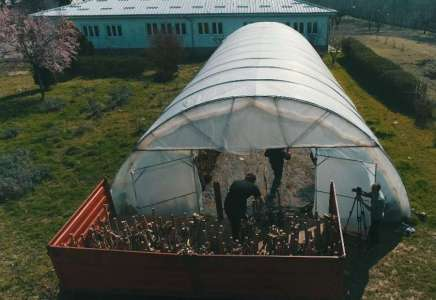 Poljoprivredna škola: i u vreme vanrednog stanja održavaju plastenike kako bi spremno sačekali povratak učenika na praktičnu nastavu