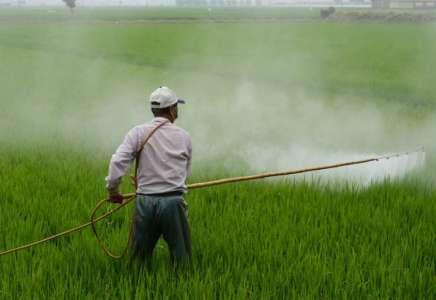 Obaveštenje fitosanitarne inspekcije o pravilnoj upotrebi pesticida