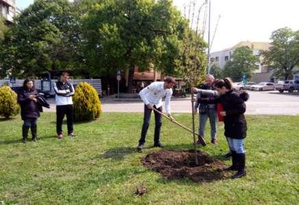 Na Dan planete Borković u Pančevu zasadio drvo
