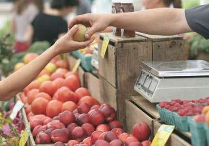 Otvoreno deset konkursa za poljoprivrednike