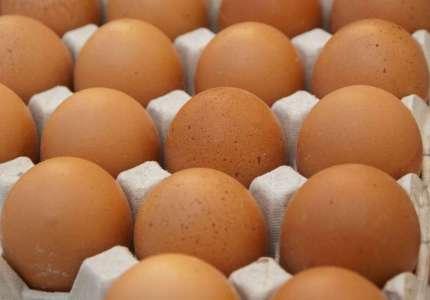 Nova pravila za proizvodnju jaja