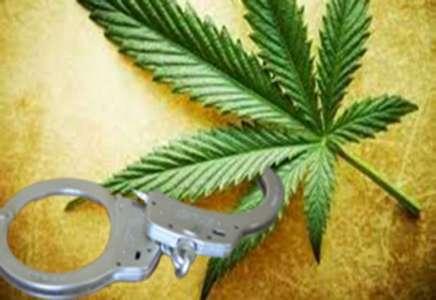 Zaplenjeni marihuana i rezani duvan
