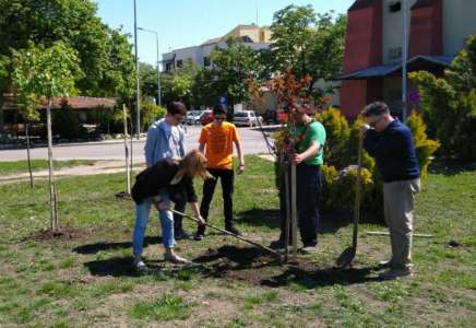 Sadnjom drveća u Pančevu obeležen Dan planete zemlje
