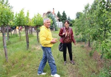 Nacrt akcionog plana o organskoj proizvodnji u Vojvodini na javnoj raspravi