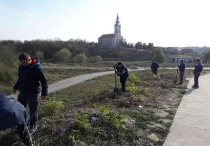 Radni vikend Aktiva mladih Dolovo